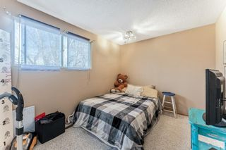 Photo 15: 10744 Mapleshire Crescent SE in Calgary: Maple Ridge Detached for sale : MLS®# A1094233