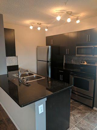 Photo 3: 302, 530 Watt Boulevard in Edmonton: Condo for rent
