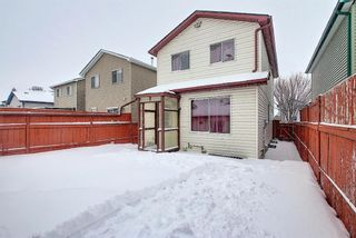Photo 31: 5233 Martin Crossing Drive NE in Calgary: Martindale Detached for sale : MLS®# A1066480