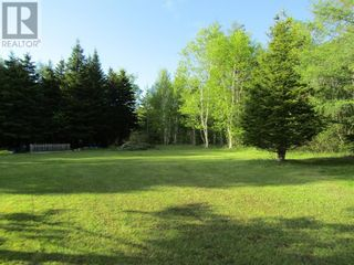 Photo 3: 25B TRANS CANADA Highway in PYNNS BROOK: Vacant Land for sale : MLS®# 1229378