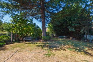 Photo 37: 2179 Cranleigh Pl in : OB Henderson House for sale (Oak Bay)  : MLS®# 852463