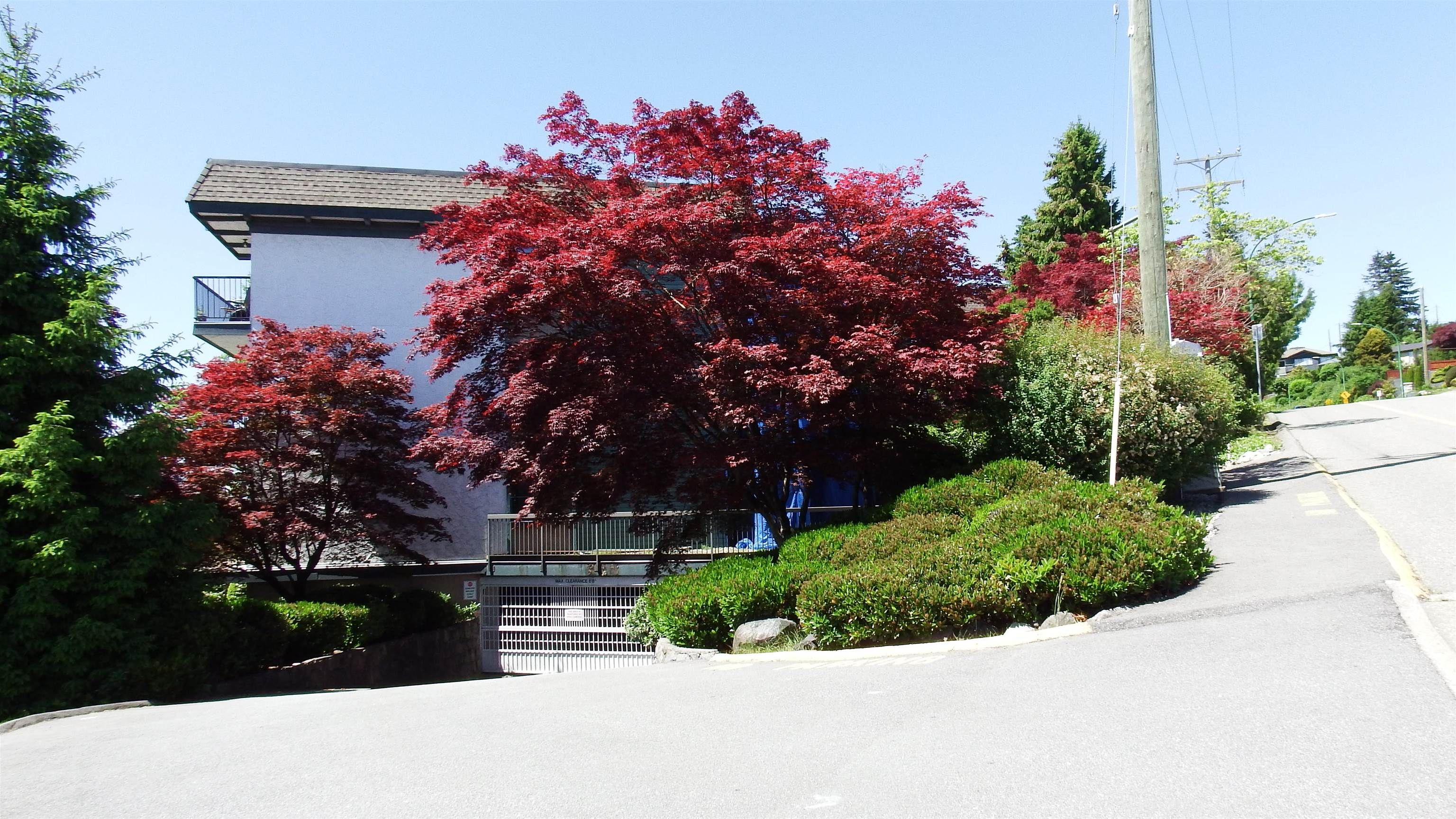 Main Photo: 213 5450 EMPIRE DRIVE in Burnaby: Capitol Hill BN Condo for sale (Burnaby North)  : MLS®# R2613590