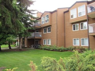Photo 2: 311, 20 Alpine Place in St. Albert: Condo for rent