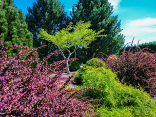 Photo 12: 6063 Breonna Dr in : Na North Nanaimo House for sale (Nanaimo)  : MLS®# 874036