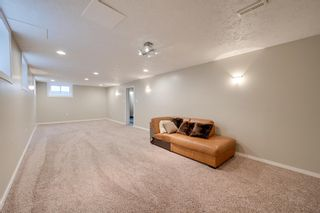 Photo 34: 8116 96 Avenue in Edmonton: Zone 18 House for sale : MLS®# E4253261