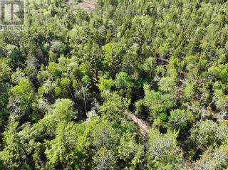 Photo 9: Lot Sunhaven Drive in Labelle: Vacant Land for sale : MLS®# 202108694