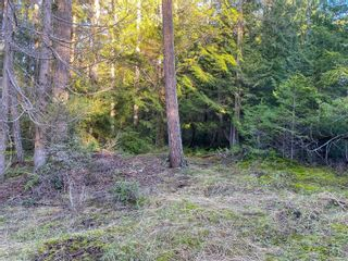 Photo 9: Lt 31 Wildwood Cres in : Isl Gabriola Island Land for sale (Islands)  : MLS®# 863197