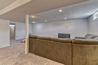 Photo 30: 10843 Mapleshire Crescent SE in Calgary: Maple Ridge Detached for sale : MLS®# A1099704