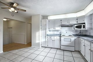 Photo 7: 451 Lysander Drive SE in Calgary: Ogden Detached for sale : MLS®# A1053955