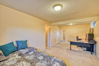 Photo 42: 404 HAWKSIDE Mews NW in Calgary: Hawkwood Detached for sale : MLS®# A1014613