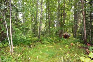 """Photo 18: 9442 POPE Road in Smithers: Smithers - Rural House for sale in """"EVELYN"""" (Smithers And Area (Zone 54))  : MLS®# R2398369"""