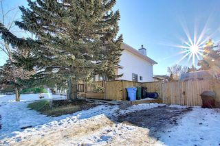 Photo 37: 211 Doverglen Crescent SE in Calgary: Dover Detached for sale : MLS®# A1060305