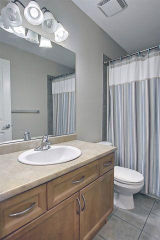 Photo 25: 320 65 Street in Edmonton: Zone 53 House for sale : MLS®# E4229354