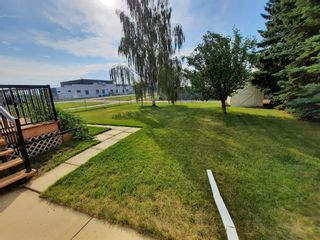 Photo 24: 1433 Idaho Street: Carstairs Detached for sale : MLS®# A1147289