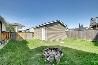 Photo 43: 135 COVEWOOD Close NE in Calgary: Coventry Hills Detached for sale : MLS®# A1023172