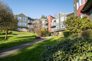 Photo 16: 318 121 W 29TH Street in North Vancouver: Upper Lonsdale Condo for sale : MLS®# R2602824