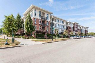 """Photo 1: 217 15168 33 Avenue in Surrey: Morgan Creek Condo for sale in """"Elgin House"""" (South Surrey White Rock)  : MLS®# R2518880"""