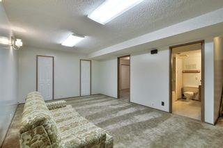 Photo 28: 12 GREER Crescent: St. Albert House for sale : MLS®# E4248514