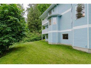 "Photo 36: 29688 CAMELOT Avenue in Abbotsford: Bradner House for sale in ""BRADNER"" : MLS®# R2456933"
