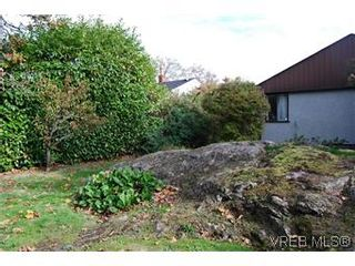 Photo 5: 2528 Forbes St in VICTORIA: Vi Oaklands House for sale (Victoria)  : MLS®# 587827