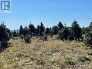 Photo 35: - Saint David Ridge in St. Stephen: Vacant Land for sale : MLS®# NB063465