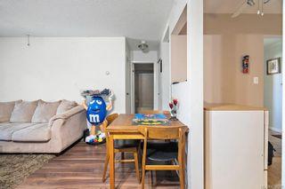 Photo 6: 205 3215 Alder St in : SE Quadra Condo for sale (Saanich East)  : MLS®# 874578