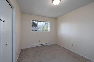 Photo 22: 4208 Morris Dr in : SE Lake Hill House for sale (Saanich East)  : MLS®# 871625