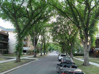 Photo 4: 10740 78 Avenue in Edmonton: Zone 15 House for sale : MLS®# E4259557