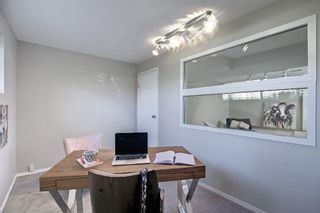 Photo 26: 9804 Alcott Road SE in Calgary: Acadia Detached for sale : MLS®# A1153501