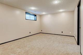Photo 21: 47 BRIDLEPOST Green SW in Calgary: Bridlewood Detached for sale : MLS®# C4296082