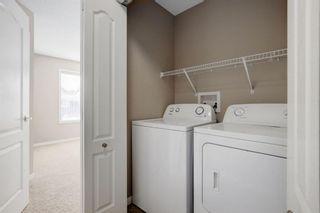 Photo 17: 195 CRANFORD Crescent SE in Calgary: Cranston Detached for sale : MLS®# A1031321