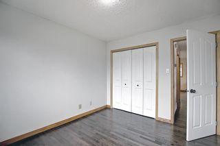 Photo 22: 4527 26 Avenue SE in Calgary: Dover Semi Detached for sale : MLS®# A1105139