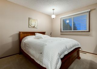 Photo 34: 24 BRACEWOOD Place SW in Calgary: Braeside Detached for sale : MLS®# A1104738