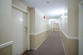 Photo 12: 305 509 CARNARVON Street in New Westminster: Downtown NW Condo for sale : MLS®# R2210081