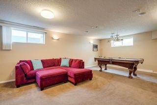 Photo 38: 167 DOUGLAS GLEN Manor SE in Calgary: Douglasdale/Glen Detached for sale : MLS®# A1026145