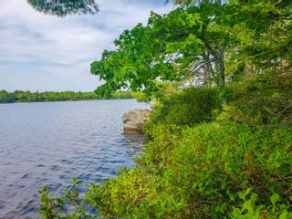 Photo 20: Lot 101 Dorey Mills Road in Clearland: 405-Lunenburg County Vacant Land for sale (South Shore)  : MLS®# 202119645