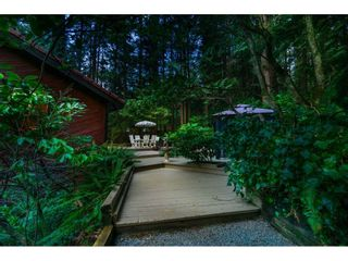 Photo 7: 11658 272 Street in Maple Ridge: Whonnock House for sale : MLS®# R2560673