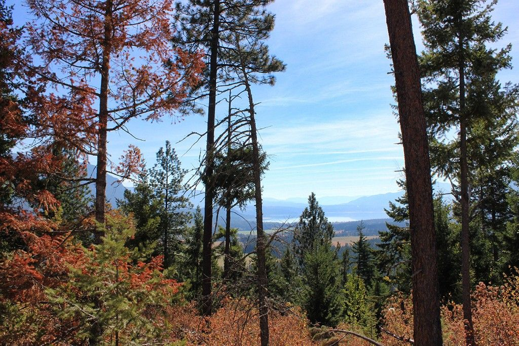 Photo 14: Photos: Lot 17 Recline Ridge Road in Tappen: Land Only for sale : MLS®# 10200571