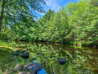Photo 5: 66 Basil Whynot Road in Upper Northfield: 405-Lunenburg County Residential for sale (South Shore)  : MLS®# 202118031