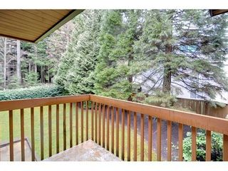 Photo 8: 5635 NANCY GREENE Way in North Vancouver: Home for sale : MLS®# V939486