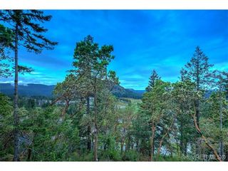 Photo 4: 114 1177 Deerview Pl in VICTORIA: La Bear Mountain House for sale (Langford)  : MLS®# 684098