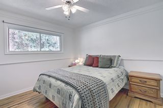 Photo 19: 166 Havenhurst Crescent SW in Calgary: Haysboro Detached for sale : MLS®# A1095089