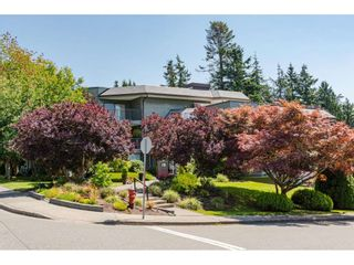 """Photo 25: 304 14950 THRIFT Avenue: White Rock Condo for sale in """"The Monterey"""" (South Surrey White Rock)  : MLS®# R2526137"""