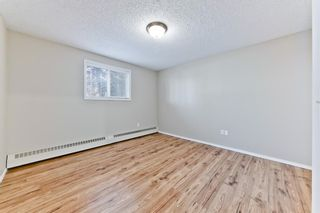 Photo 17: 103 11 Dover Point SE in Calgary: Dover Apartment for sale : MLS®# A1083330