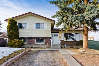 Main Photo: 19 Pinebrook Place NE in Calgary: Pineridge Detached for sale : MLS®# A1077648