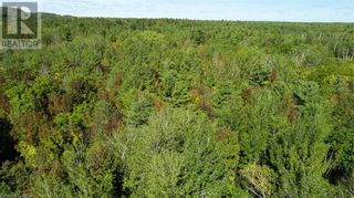Photo 5: . MURRAY Street in Quinte West: Vacant Land for sale : MLS®# 40172448