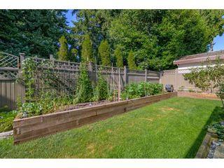 Photo 32: 12677 61B Avenue in Surrey: Panorama Ridge House for sale : MLS®# R2599969