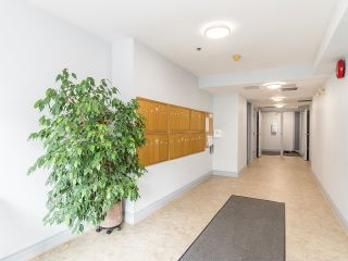 """Photo 5: 102 5955 177B Street in Surrey: Cloverdale BC Condo for sale in """"Windsor Place"""" (Cloverdale)  : MLS®# R2617210"""