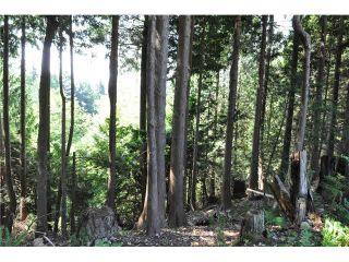 """Photo 8: LOT 6 BAY ROAD in Sechelt: Sechelt District Land for sale in """"DAVIS BAY"""" (Sunshine Coast)  : MLS®# V1073026"""