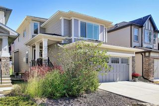 Photo 42: 14 HILLCREST Street SW: Airdrie Detached for sale : MLS®# A1031272